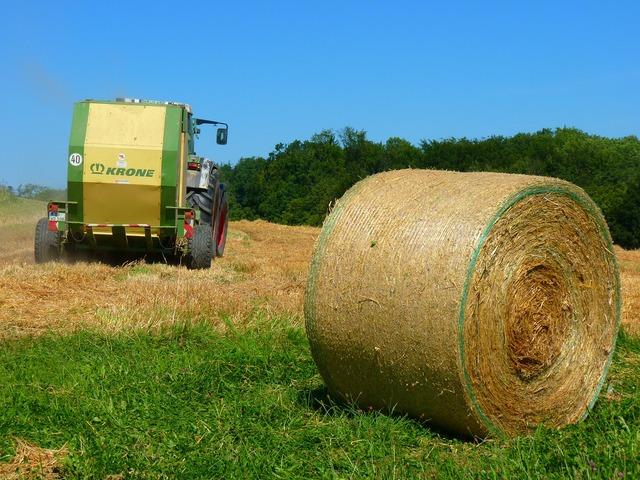 Harvest harvested field.