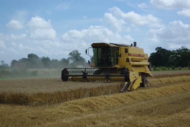 Harvesting agriculture combine harvester.