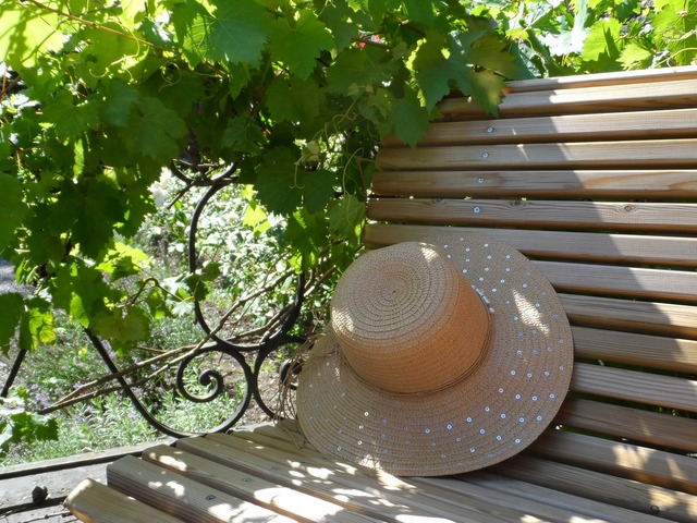 Hat bench summer.