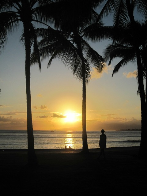 Hawaii beach sea, travel vacation.