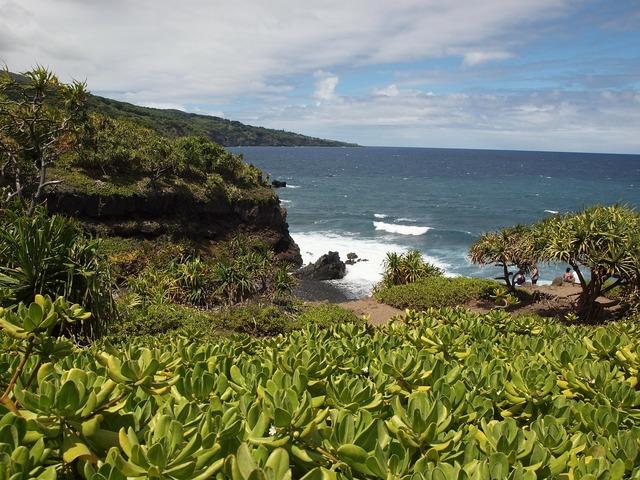 Hawaii maui beach, travel vacation.