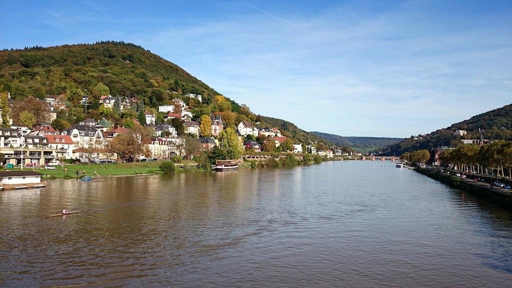 Heidelberg neckar river.