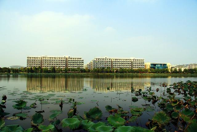 High-rise building housing block campus, architecture buildings.