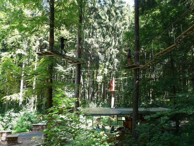 High ropes course climb drex, nature landscapes.