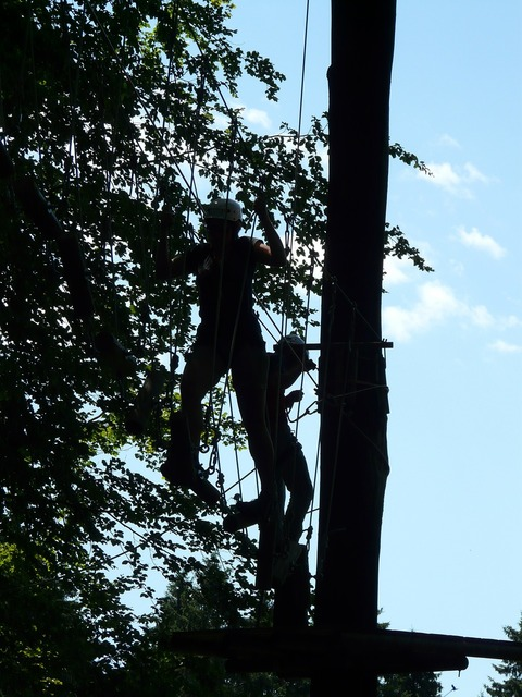 High ropes course obstacle climb, nature landscapes.