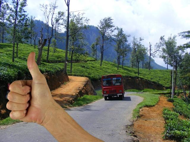 Hitchhiker autostop traveler, transportation traffic.