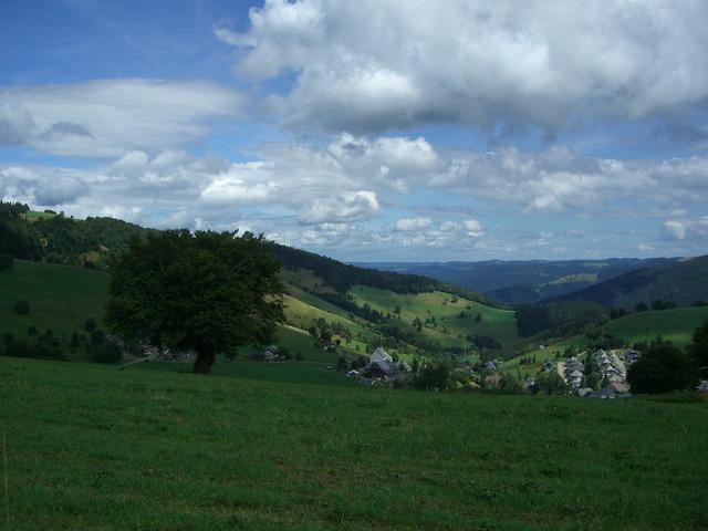 Hofsgrund schauinsland black forest.