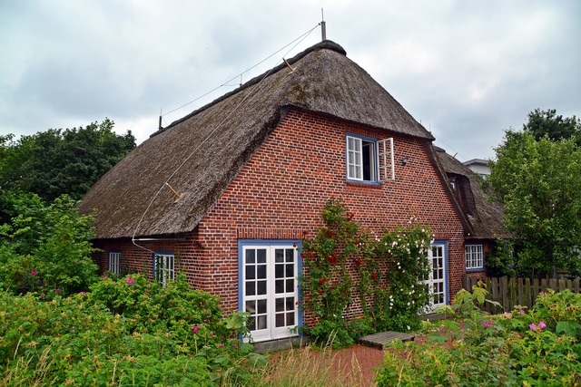 Home thatched roof baltic sea, architecture buildings.