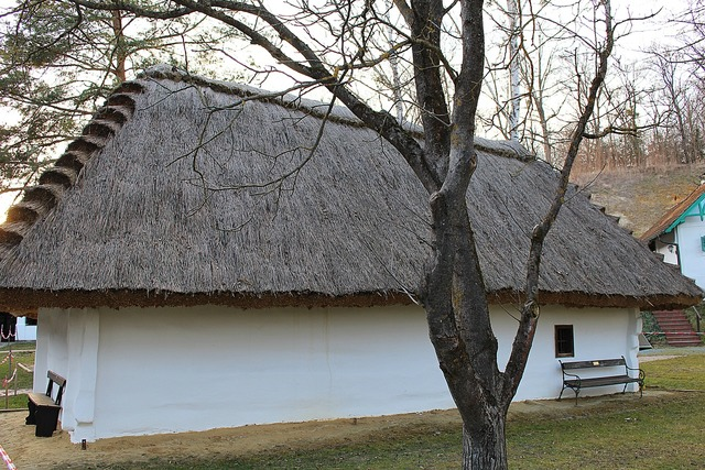 Home thatched roof straw roof, architecture buildings.
