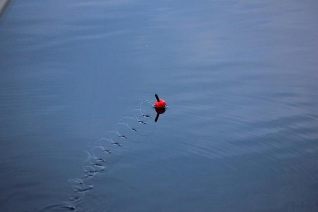 Hook and line ongenkoho lake.