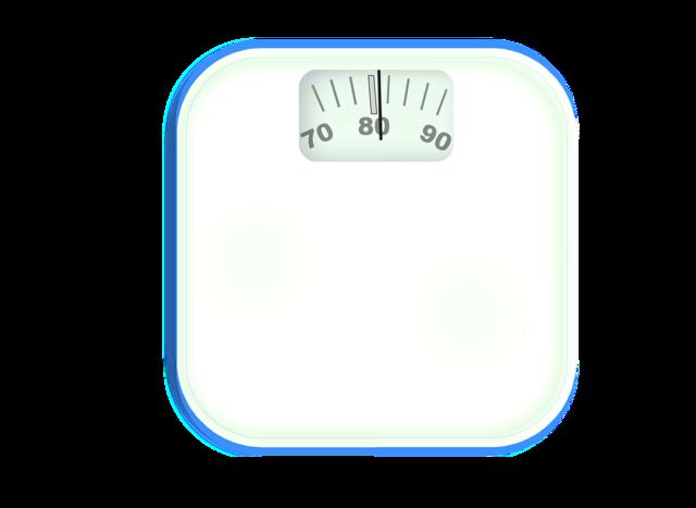 Horizontal bathroom scale weight.