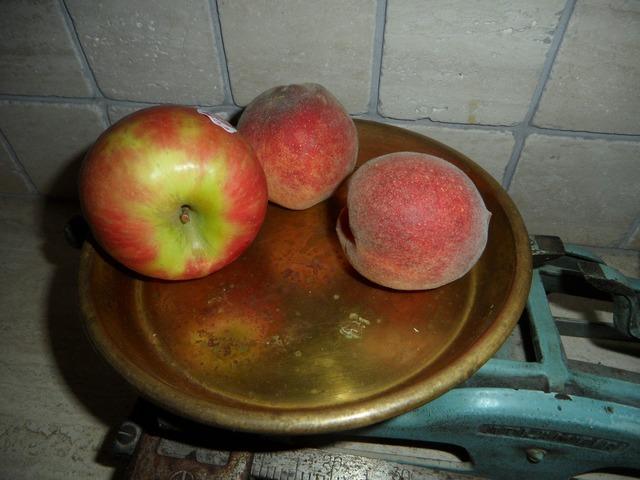 Horizontal pan fruit, food drink.
