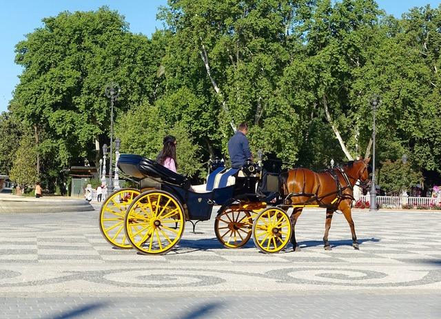 Horse and cart carriage traditional, transportation traffic.