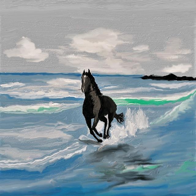 Horse rap gallop.