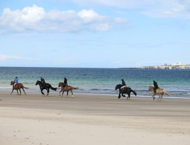 Horse riding beach, travel vacation.
