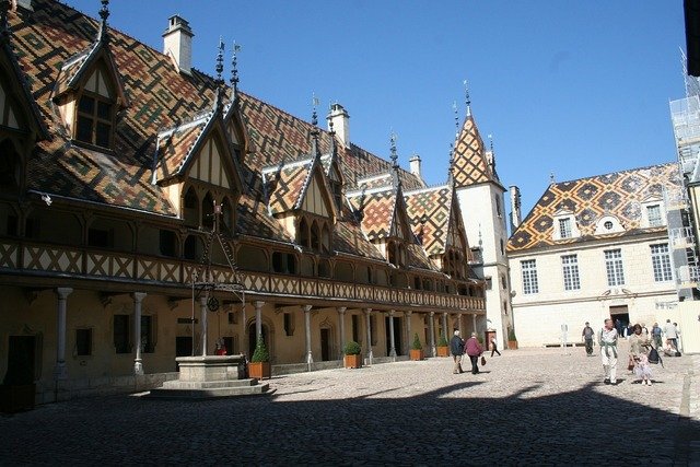 Hotel dieu france roof, architecture buildings.