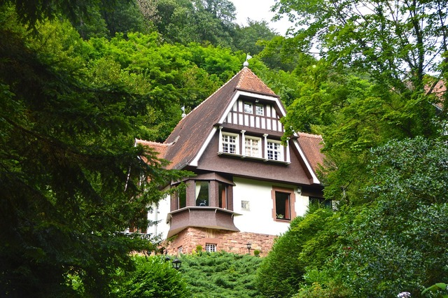 House in the green forest home, nature landscapes.