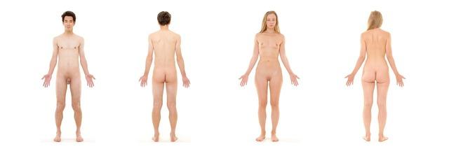Human anatomy female, health medical.