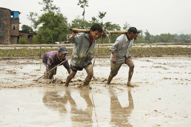 Human efforts men at work mud, nature landscapes.