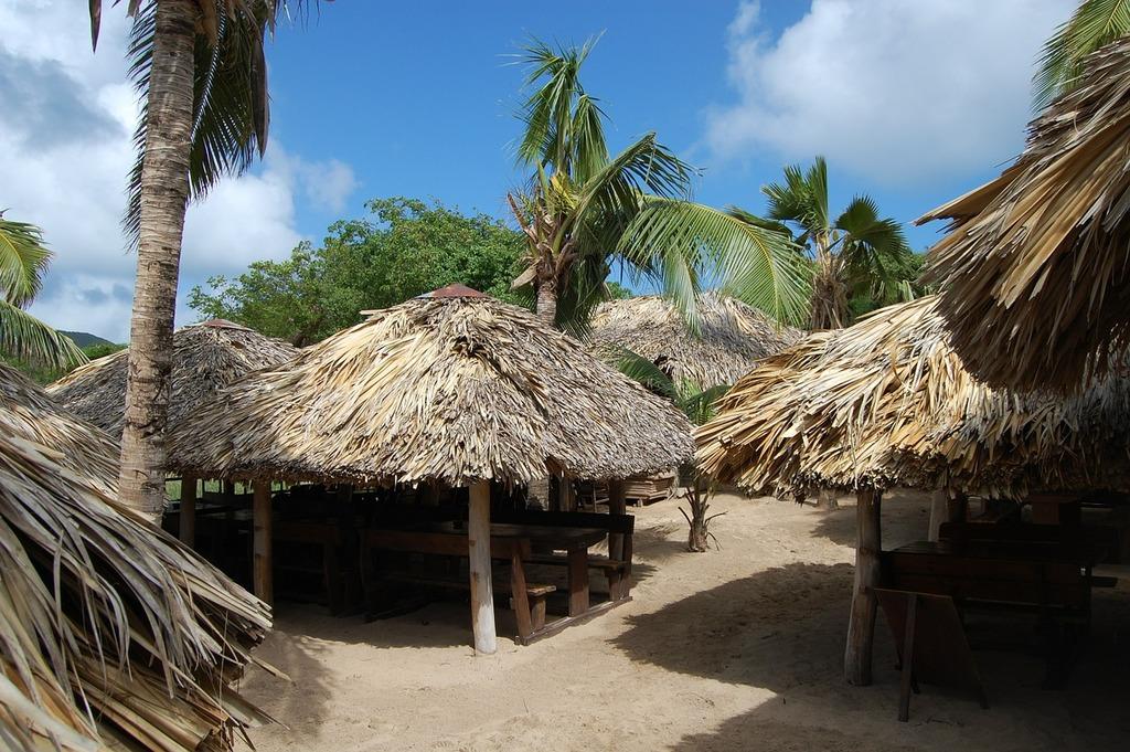 Hut caribbean thatched, nature landscapes.