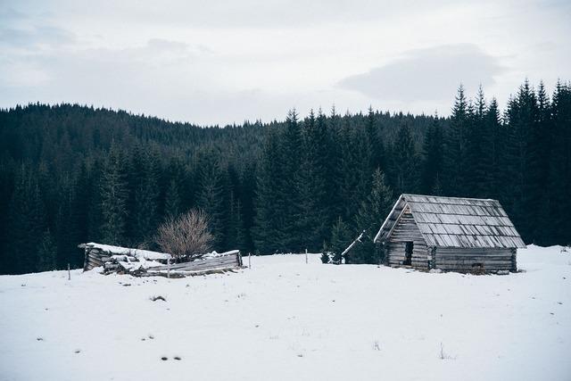 Hut shed winter, nature landscapes.