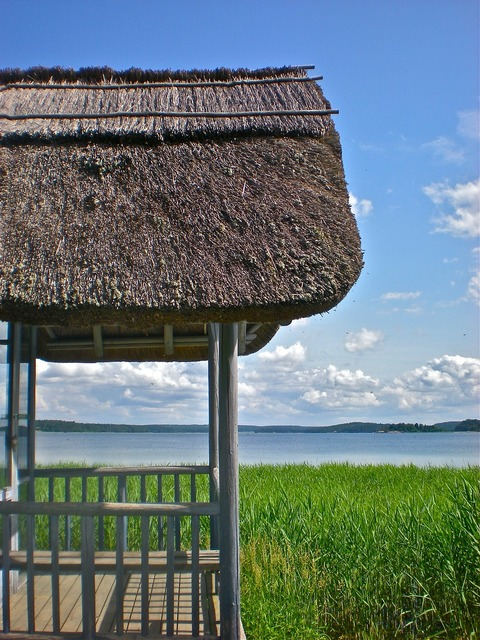 Hut thatched roof reed.