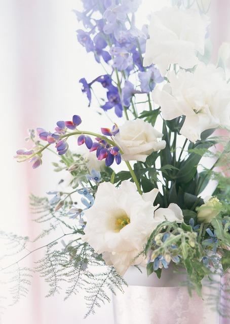 Hwasaham flowers spring.