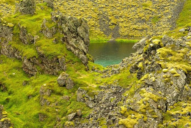 Iceland lake foams.