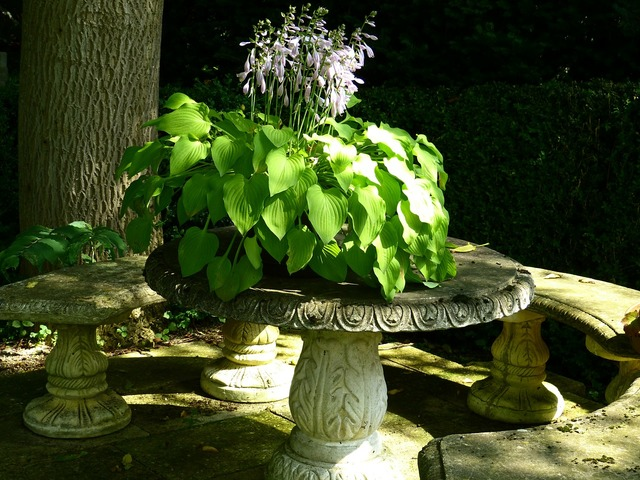 Idyll garden bench stone table, nature landscapes.