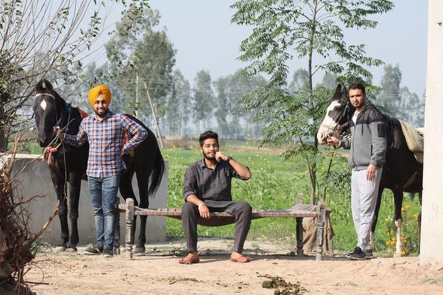 India countryside farm.