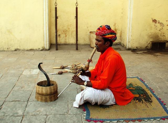 India jaipur snake charmer.