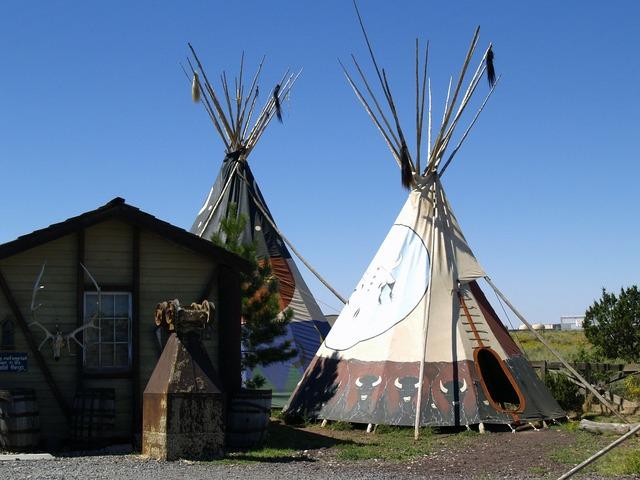 Indian native ti pi.
