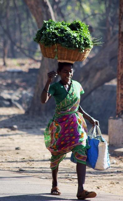 Indian vegetables seller, transportation traffic.