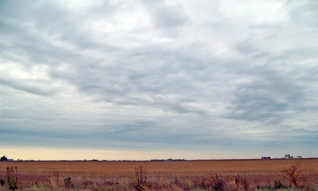 Indiana field autumn, nature landscapes.