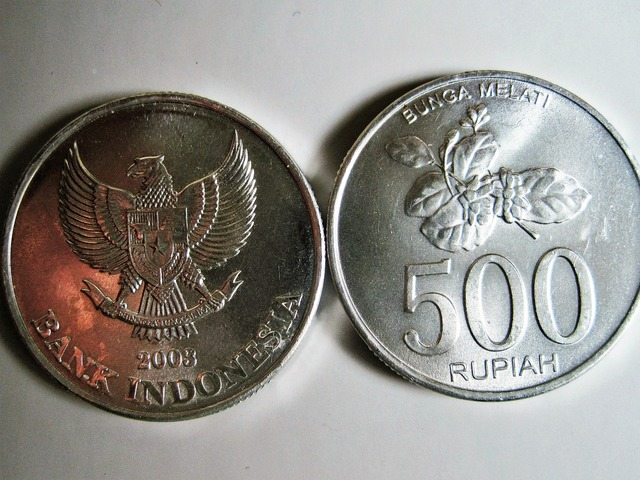 Indochinese rupiah bank indonesia coins, business finance.