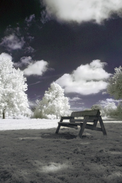 Infrared nature landscape, nature landscapes.