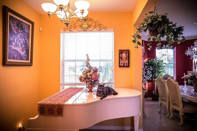 Interior piano room, animals.