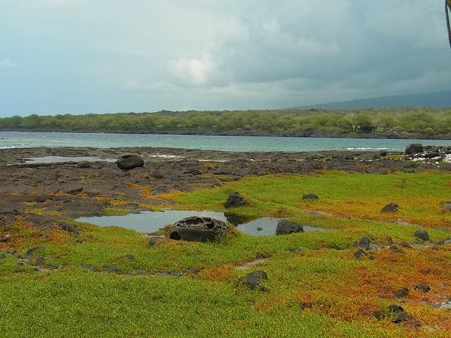 Island of hawaii hawaii sea, travel vacation.