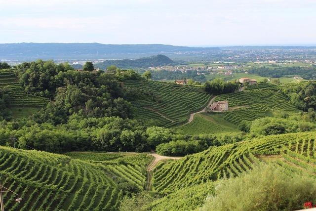Italy treviso hills.
