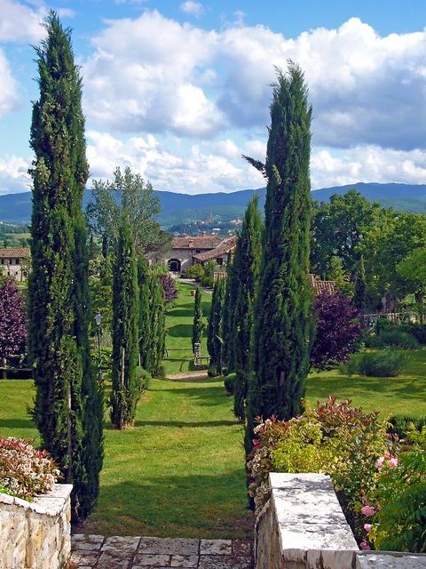 Italy tuscany avenue.