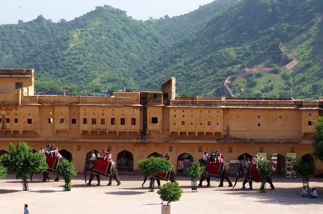 Jaipur fort elephants architecture, architecture buildings.