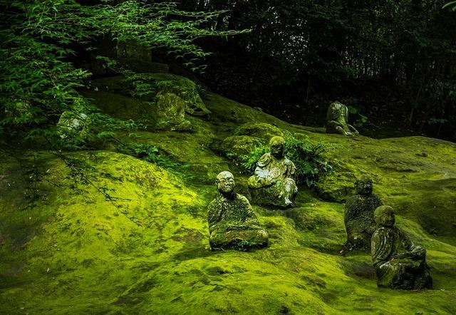 Japan buddha statue buddha, religion.
