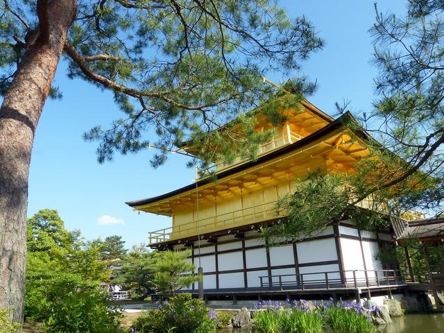 Japan kyoto prefecture kinkaku, nature landscapes.
