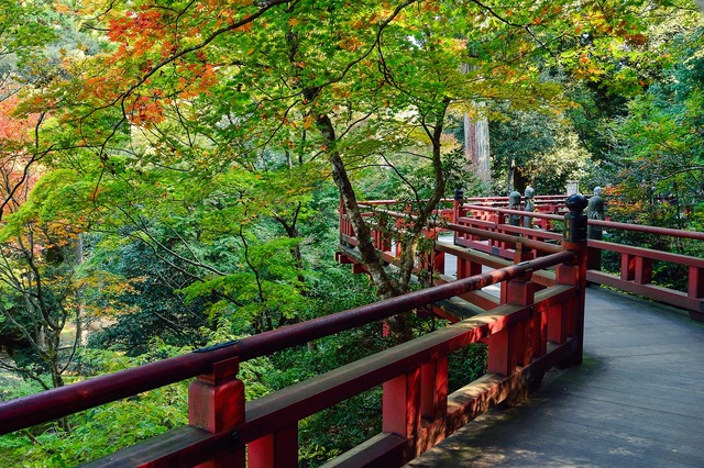 Japan landscape natural, nature landscapes.