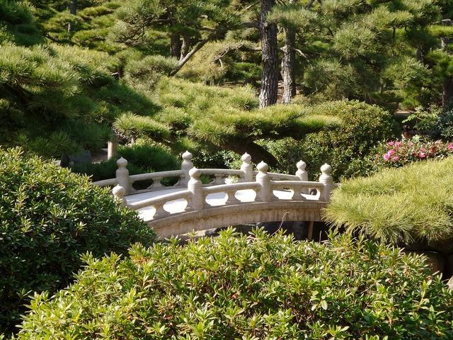 Japanese garden bridge.