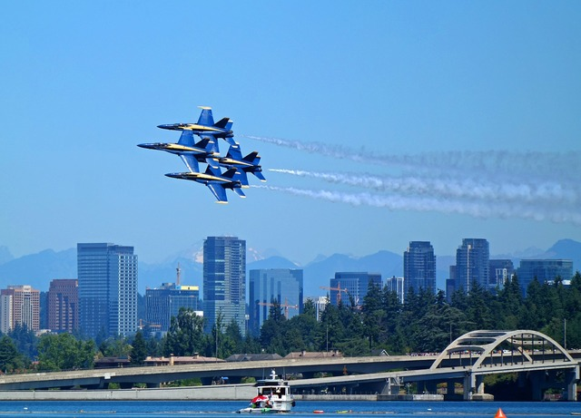 Jets blue angels navy.