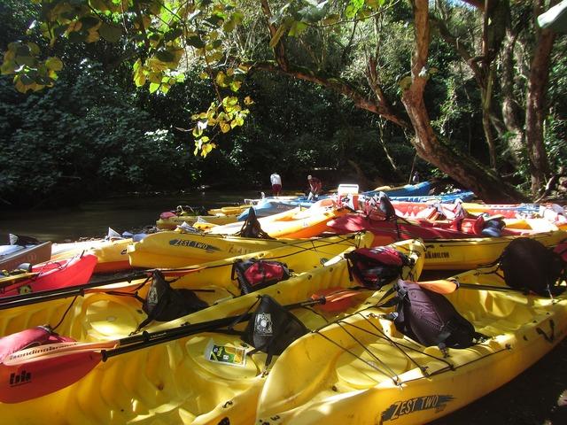 Kayak river wailua river.