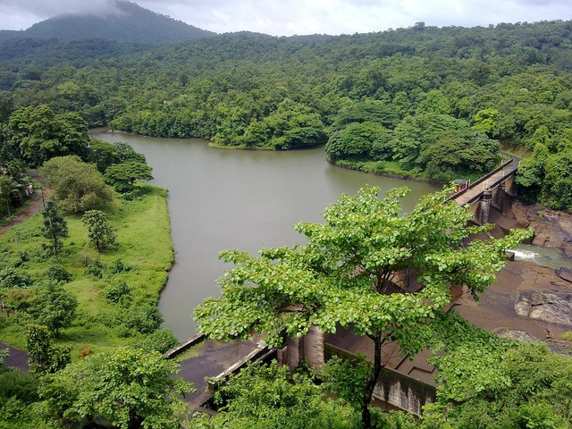 Kerala river india.