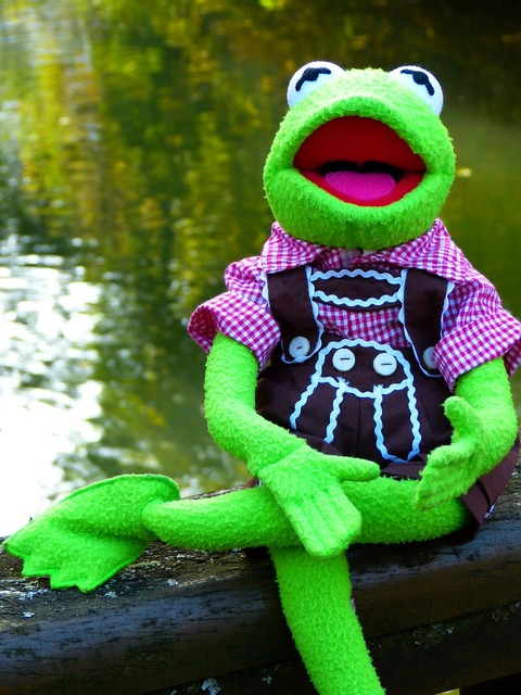 Kermit frog doll.