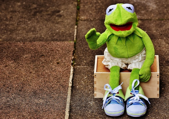 Kermit sit bank.